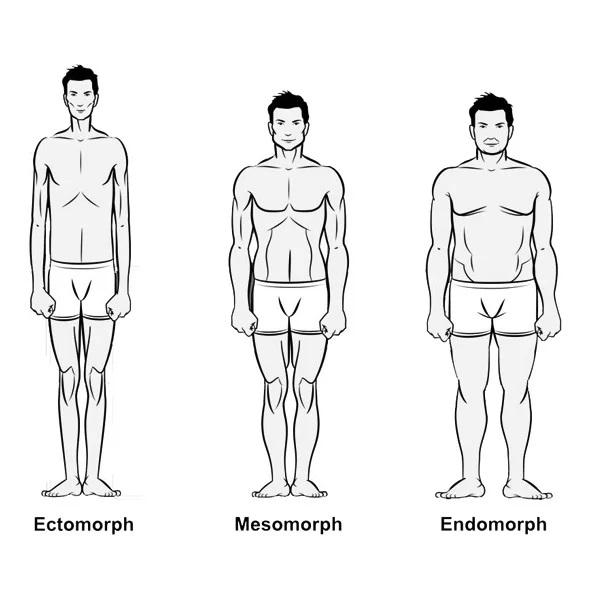 Welk lichaamstype ben jij?